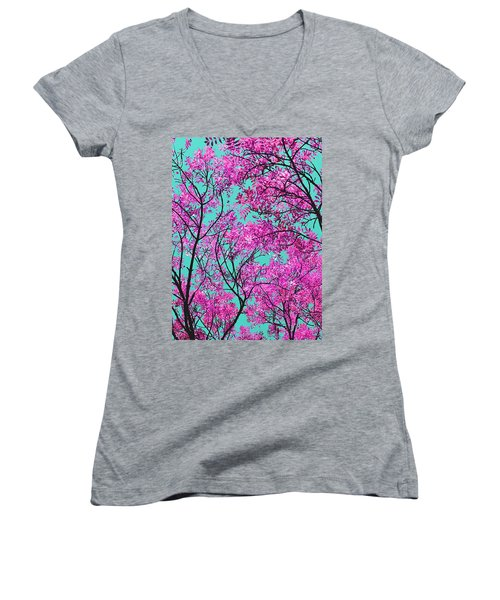 Natures Magic - Pink And Blue Women's V-Neck T-Shirt
