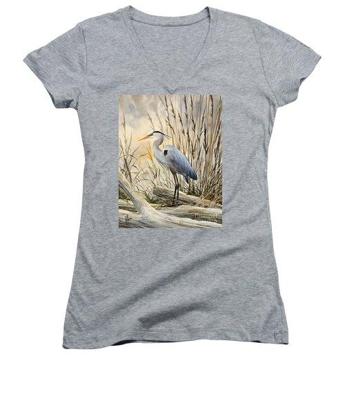 Nature's Wonder Women's V-Neck T-Shirt