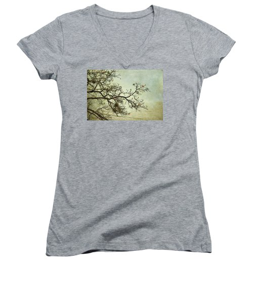 Nearly Bare Branches Women's V-Neck