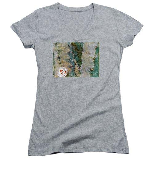 Needles In The Desert Women's V-Neck T-Shirt
