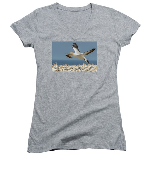 Nest Building Women's V-Neck (Athletic Fit)