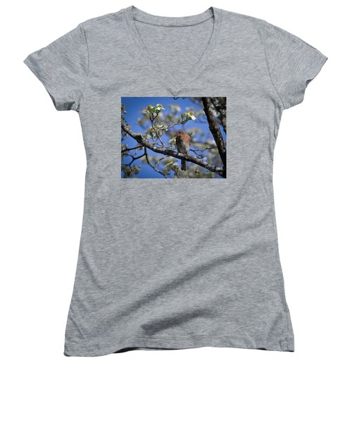 Nest Building Women's V-Neck T-Shirt (Junior Cut) by Douglas Stucky