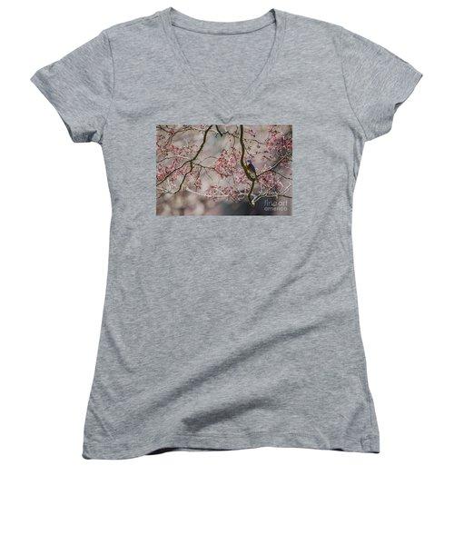 Nest Scouting Women's V-Neck T-Shirt