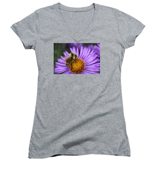 New England Aster And Bee Women's V-Neck T-Shirt (Junior Cut) by Steve Augustin