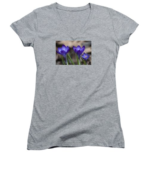 New Life Women's V-Neck T-Shirt (Junior Cut) by Dan Hefle