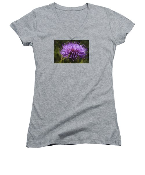New Mexican Thistle Women's V-Neck T-Shirt