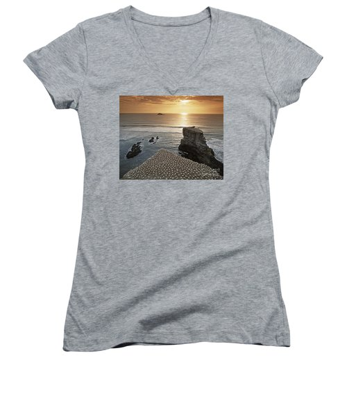Women's V-Neck featuring the photograph new zealand gannet colony at muriwai beach ,gannet fly from Muri by Juergen Held