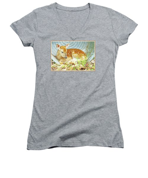 Newborn Fawn Takes Shelter In An Old Washtub II Women's V-Neck T-Shirt