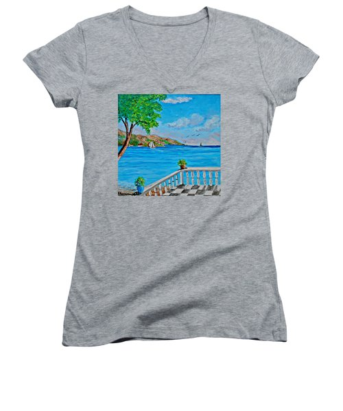 Nice View Women's V-Neck (Athletic Fit)