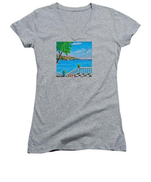 Nice View Women's V-Neck T-Shirt
