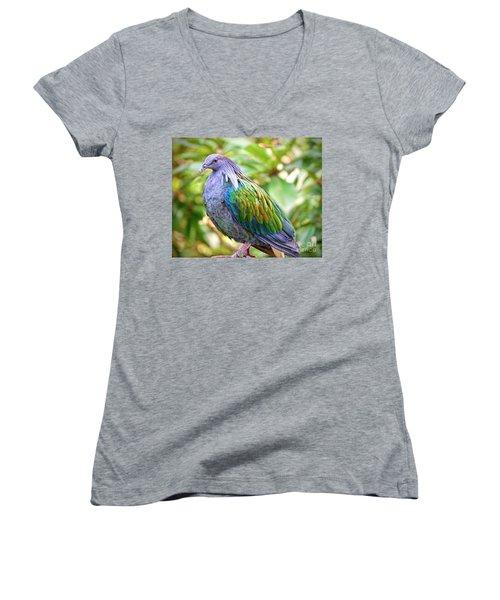 Nicobar Island Occupant Women's V-Neck T-Shirt