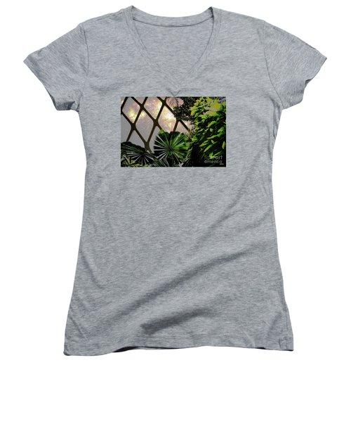 Night In The Arboretum Women's V-Neck T-Shirt (Junior Cut) by Deborah Nakano