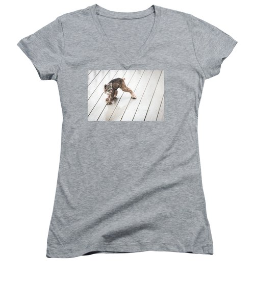 Ninja Lynx Kitty Women's V-Neck T-Shirt