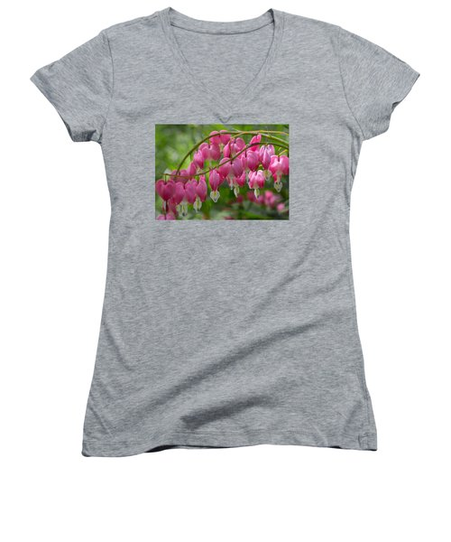Bleeding Heart Women's V-Neck (Athletic Fit)