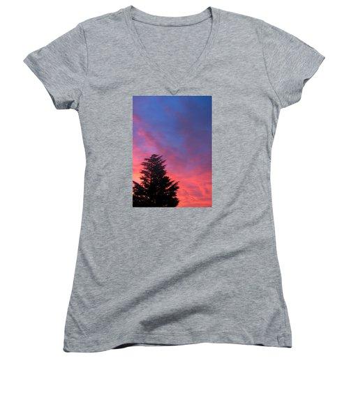 Nordic Women's V-Neck T-Shirt