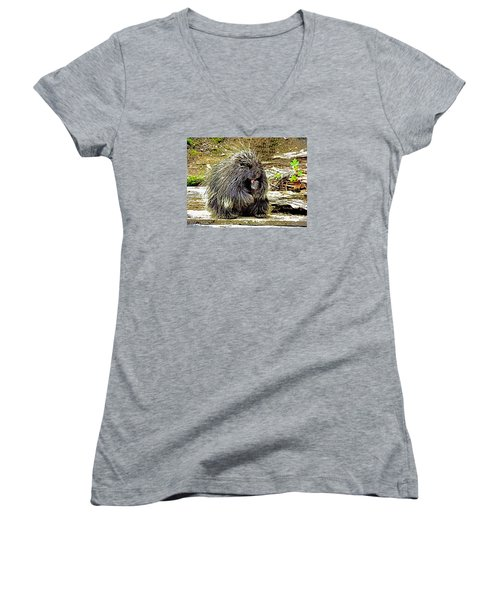 Women's V-Neck T-Shirt (Junior Cut) featuring the photograph North American Porcupine by Kathy Kelly