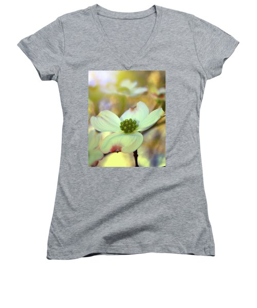 North Carolina Dogwood State Flower Women's V-Neck T-Shirt (Junior Cut) by Gray  Artus