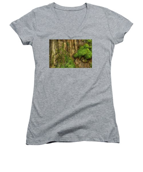 Women's V-Neck T-Shirt (Junior Cut) featuring the photograph North Side Of The Tree by Mike Eingle