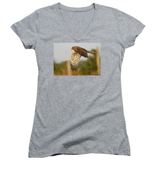 Northern Harrier Flight Women's V-Neck T-Shirt