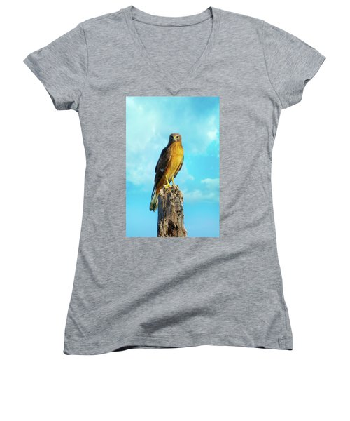 Northern Harrier Hawk Women's V-Neck T-Shirt