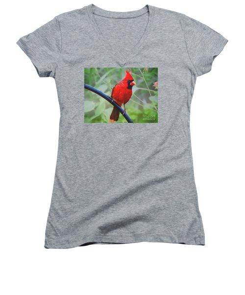 Northern Male Red Cardinal Bird Women's V-Neck T-Shirt