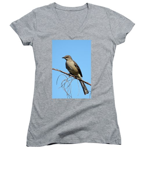 Northern Mockingbird Women's V-Neck T-Shirt (Junior Cut) by Bruce J Robinson