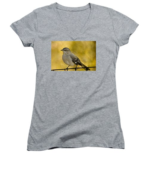 Northern Mockingbird Women's V-Neck T-Shirt (Junior Cut) by Chris Lord