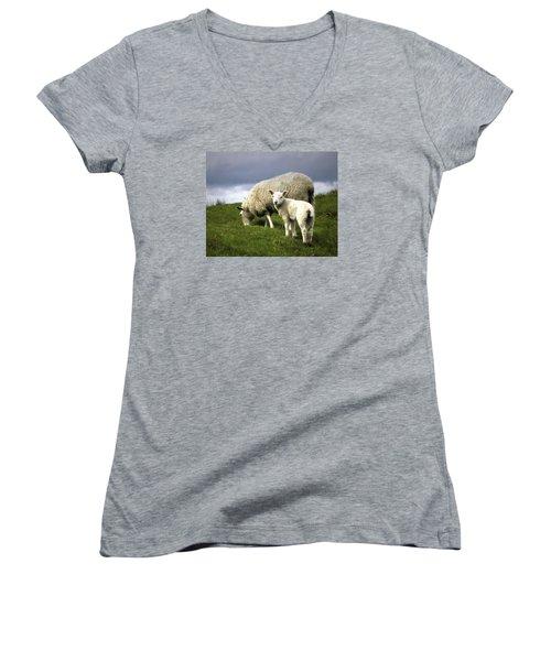 Northumberland Lamb Women's V-Neck T-Shirt