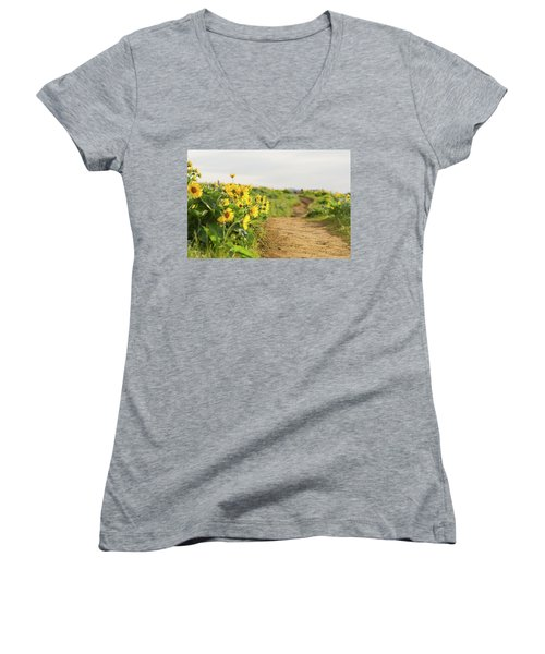 Northwest Balsamroot On Mosier Plateau Women's V-Neck