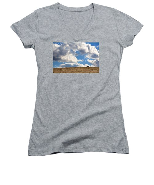 Not A Cow In The Sky Women's V-Neck (Athletic Fit)