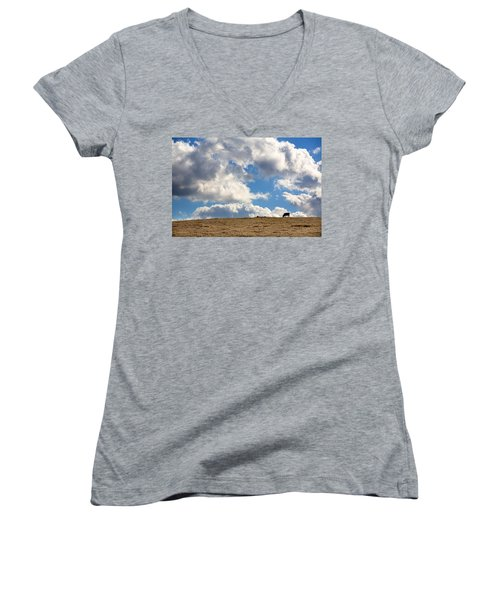 Not A Cow In The Sky Women's V-Neck