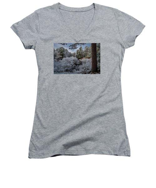 Novenber 1 On The Sucker River Women's V-Neck T-Shirt