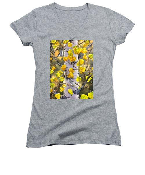 Nuthatches Women's V-Neck T-Shirt