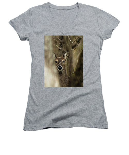 Observed  Women's V-Neck T-Shirt (Junior Cut) by Bruce Patrick Smith