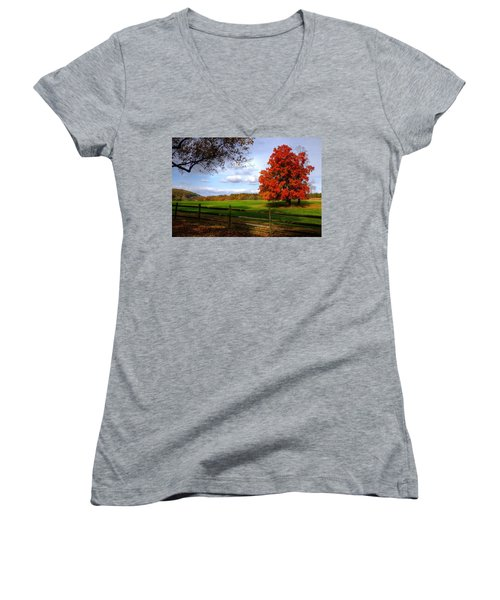 Oh Beautiful Tree Women's V-Neck (Athletic Fit)