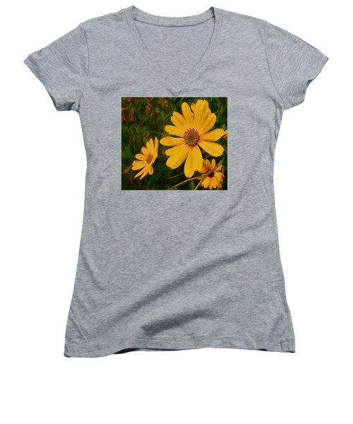 Oil Glaze Wildflowers Women's V-Neck