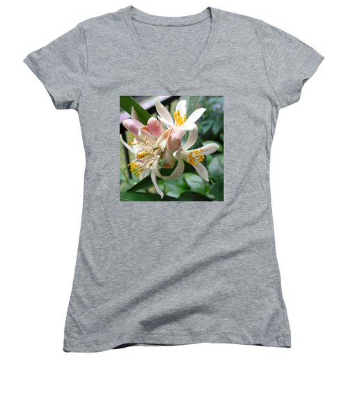 Old And New Women's V-Neck T-Shirt