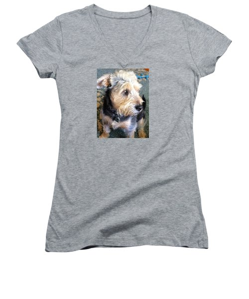 Old Dogs Rock Women's V-Neck (Athletic Fit)