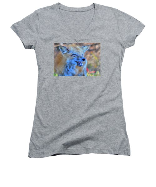 Women's V-Neck T-Shirt featuring the photograph Old Fox by Debbie Stahre