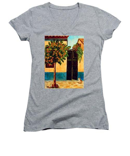 Old Neighborhood Women's V-Neck T-Shirt