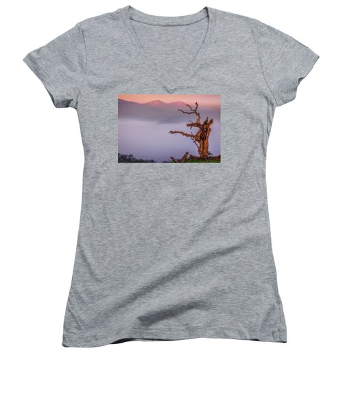 Old Oak And Mt. Diablo On A Foggy Morning Women's V-Neck T-Shirt (Junior Cut) by Marc Crumpler