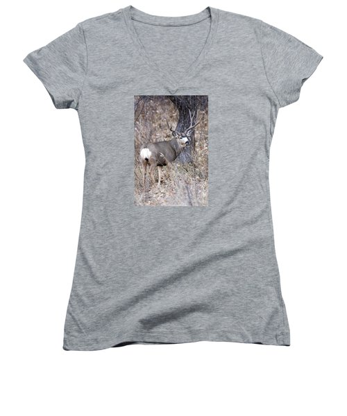 Old Orchard II Women's V-Neck T-Shirt