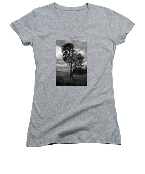 Old Tree, Lost Trail Wildlife Refuge Women's V-Neck