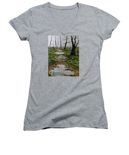Old Walking Trail Women's V-Neck T-Shirt (Junior Cut) by Jack G  Brauer