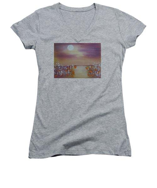 Olde Tyme Pumpkin Patch And Maze Women's V-Neck T-Shirt (Junior Cut)