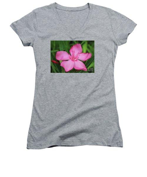 Oleander Professor Parlatore 2 Women's V-Neck T-Shirt (Junior Cut) by Wilhelm Hufnagl