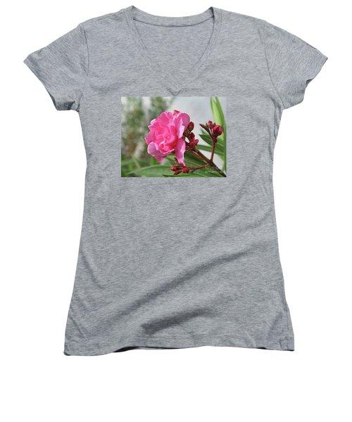 Oleander Splendens Giganteum 4 Women's V-Neck T-Shirt (Junior Cut) by Wilhelm Hufnagl