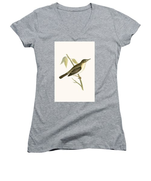 Olivaceous Warbler Women's V-Neck T-Shirt (Junior Cut) by English School