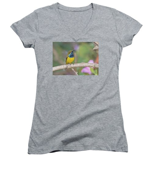 Olive-backed Sunbird Women's V-Neck T-Shirt