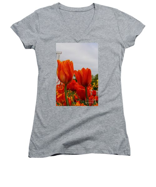 Women's V-Neck T-Shirt (Junior Cut) featuring the photograph On Fire by Robert Pearson